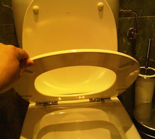 Tapa o asiento de inodoro el blog de fontaner a for Tapa de water
