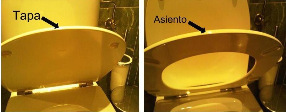 Tapa y asiento de inodoro